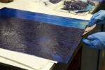 An artist pulling blue etching ink onto an etching plate.