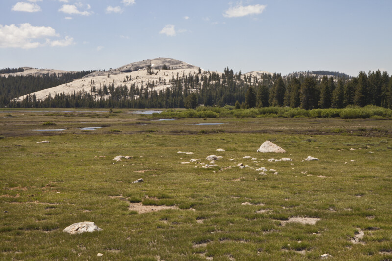 An Exposed Granite Dome across a Meadow