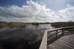 Anhinga Trail Boardwalk