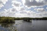 Anhinga Trail of Everglades National Park
