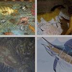 Animal Artworks in 2D photographs