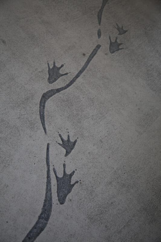 Alligator Footprints on Sidewalk