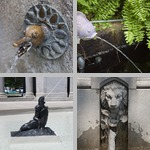 Animal Fountains photographs