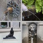 Animal Fountains photographs