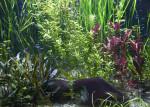 Aquarium at the Hellabrunn Zoo