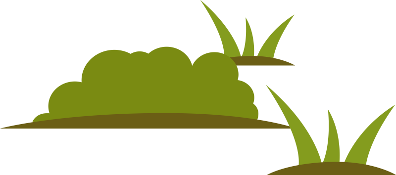 Arrangement of Stylized  Wetlands Plants
