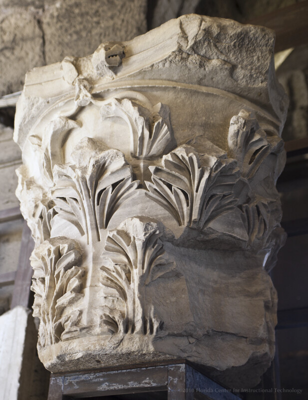 Asiatic Corinthian Capital