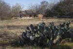 Schumacher House at the San Antonio Botanical Garden from a Distance