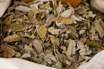 Bag of Sage Tea