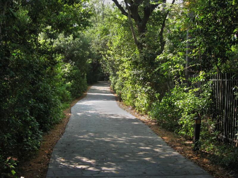 Barnacle Path