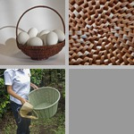 Basketry photographs