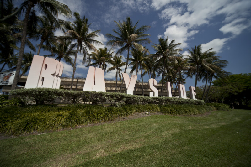 Bayside Sign and Palms