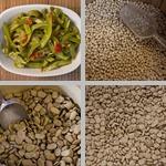 Beans & Legumes photographs