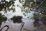 Bear Lake at Everglades National Park