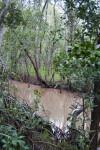 Bear Lake Trail Creek