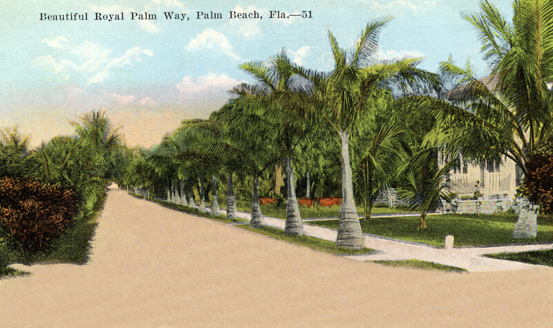 Beautiful Royal Palm Way in Palm Beach, Florida