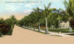 Beautiful Royal Palm Way in Palm Beach, Florida
