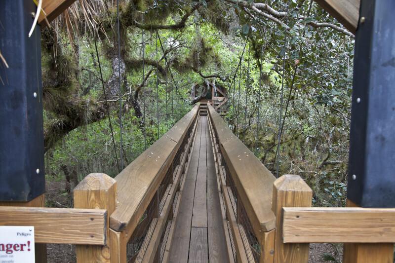 Beginning of Skywalk at Myakka River State Park