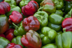 Bell Peppers in Monroeville, PA