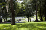 Benches in the Shade