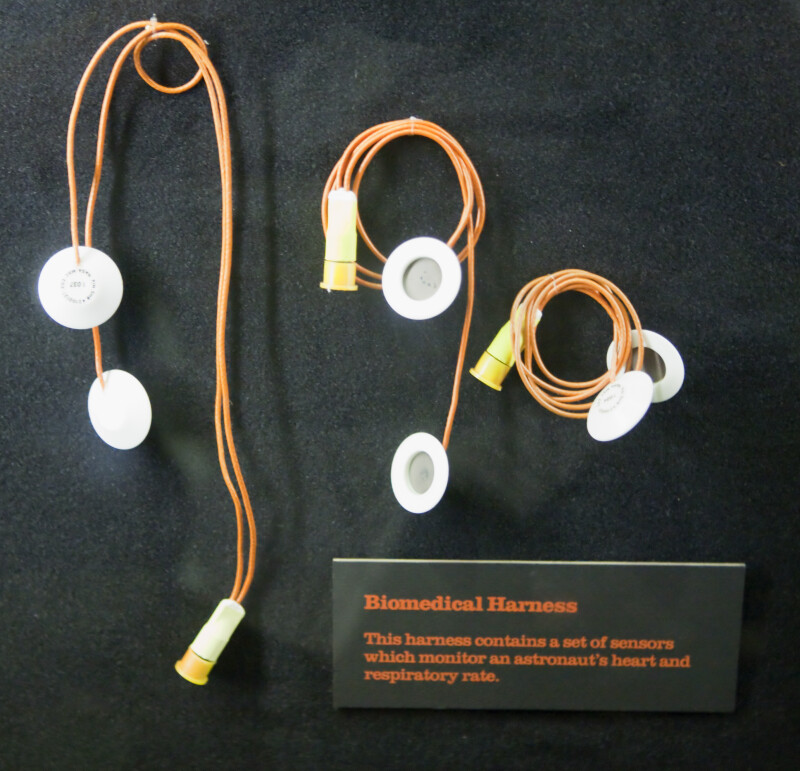 Biomedical Harness