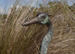 Bird Sculpture at the Big Cypress National Preserve