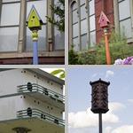 Birdhouses photographs
