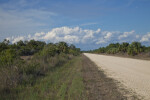 Birdon Road at the Big Cypress National Preserve