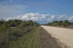 Birdon Road at the Big Cypress National Preserve