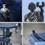 Blue photographs