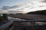 Boardwalk and Creek