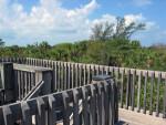 Boardwalk and Railing