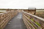 Boardwalk at Myakka River State Park