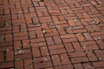 Brick Sidewalk Sparsely Covered by Fallen Leaves and Branches