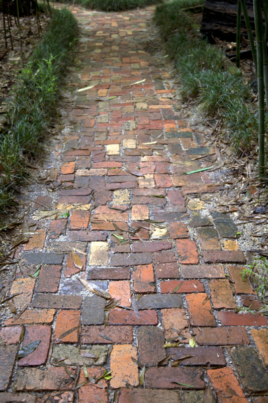 Brick Walkway at the Kanapaha Botanical Gardens