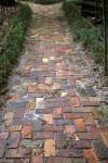 Brick Walkway at the Kanapaha Botanical Gardens