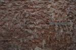 Brick Wall with Distinctive Texture at the Artis Royal Zoo