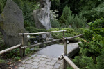 Bridge with Bamboo Handrails at the Artis Royal Zoo