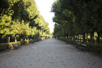 Broad Walkway