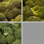 Broccoli photographs