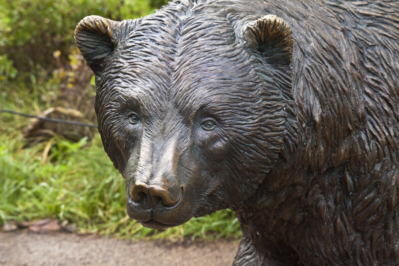 Bronze Bear at Zoo
