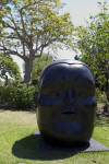 Bronze Botero Head