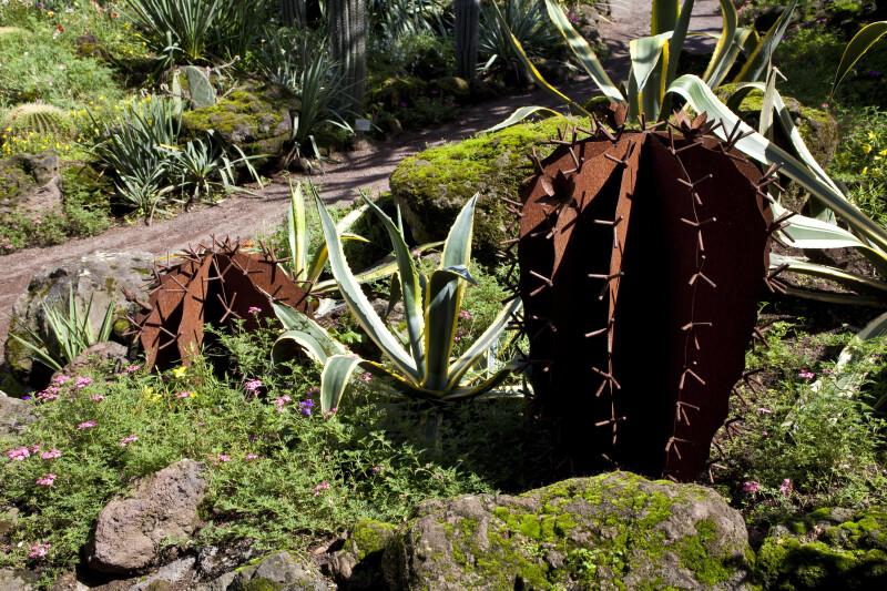Bronze Cacti