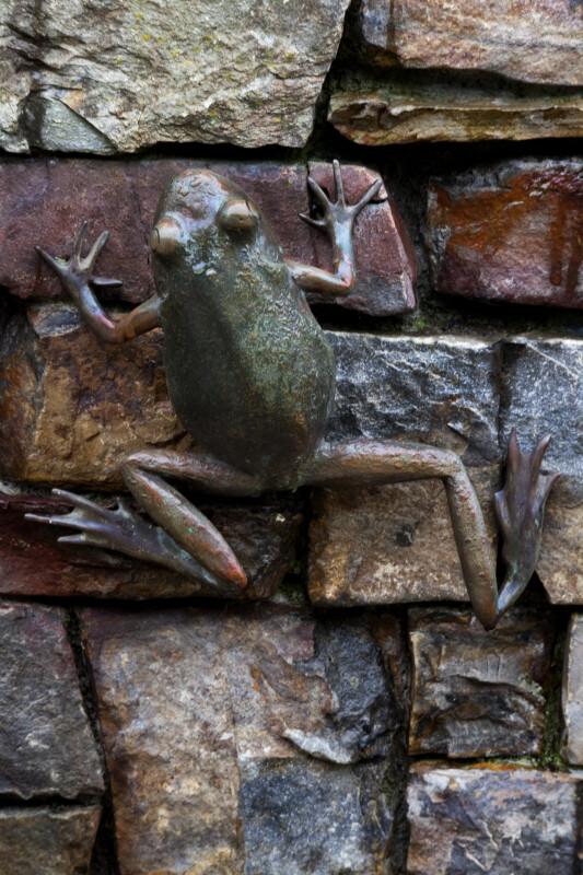 Bronze Frog Climbing