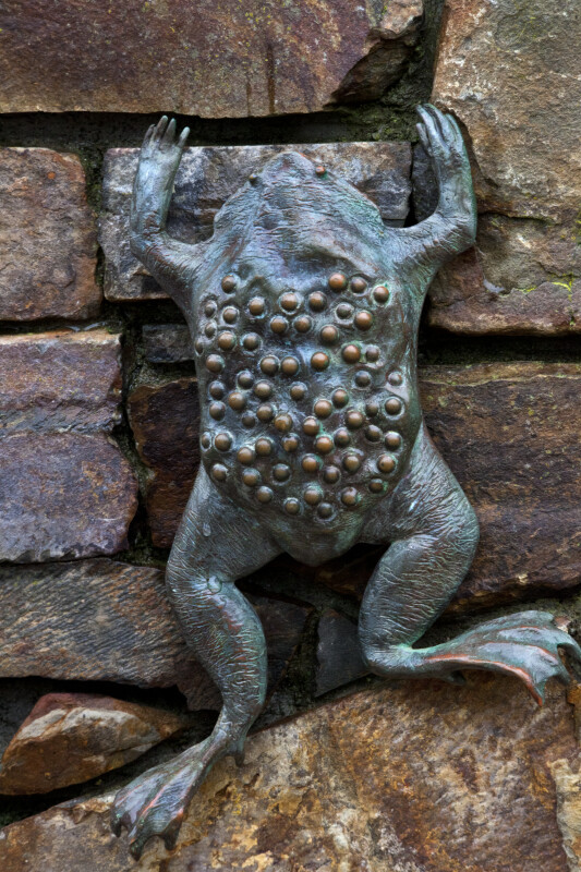Bronze Frog with Eggs on Back