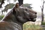 Bronze Lioness Statue