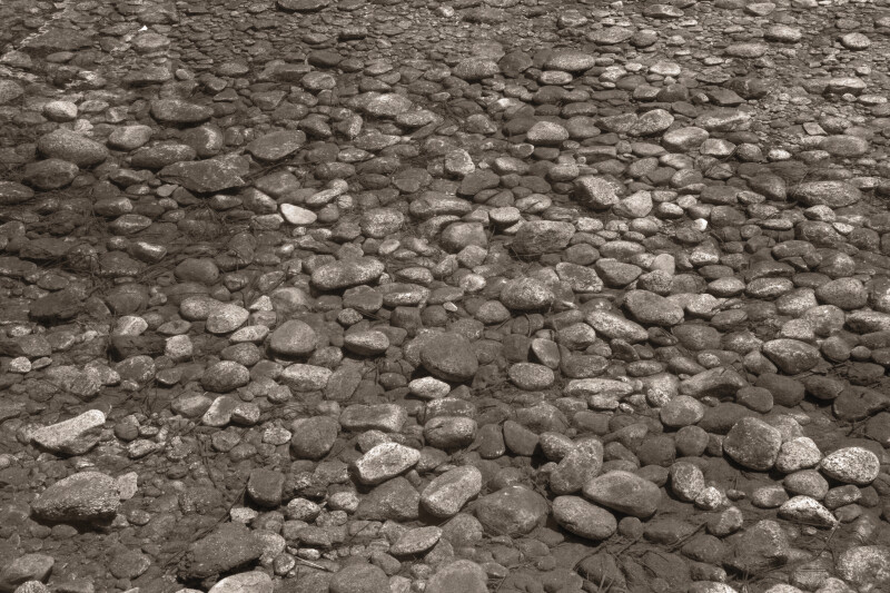 Brown Cobbles in a Stream Bed