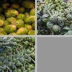Brussels Sprouts photographs