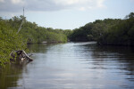 Buttonwood Canal