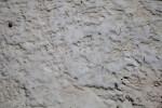 Caked Sand at Biscayne National Park